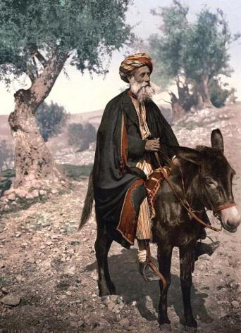 old-palestinian-man-riding-a-donkey